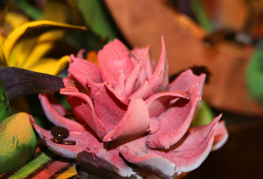 Harrah's Resort Southern California chocolate flower