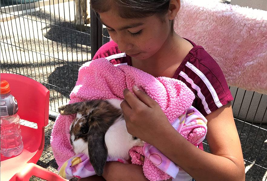 Henry Schein 2019 Girl Holding Bunny
